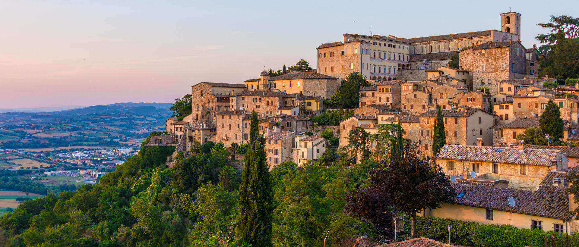 Image  result for pictures of todi