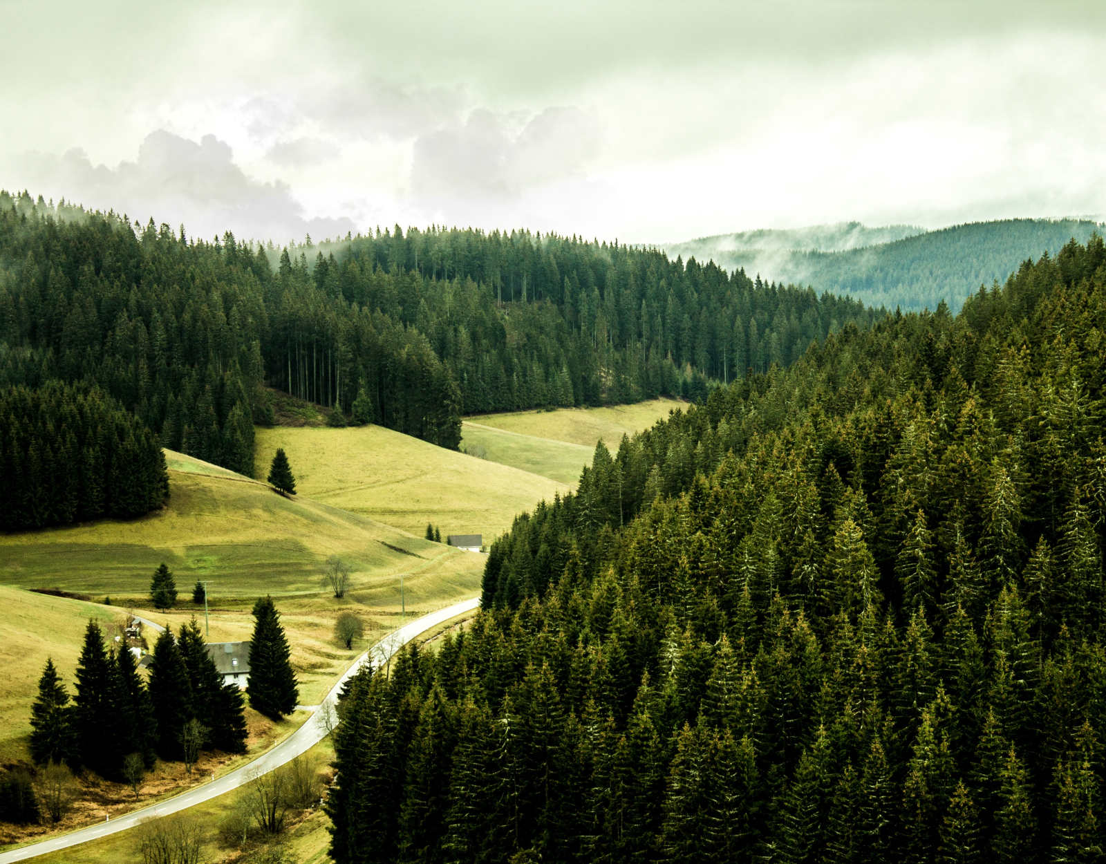 Explore Black Forest And Visit More Cities By Bus-8850
