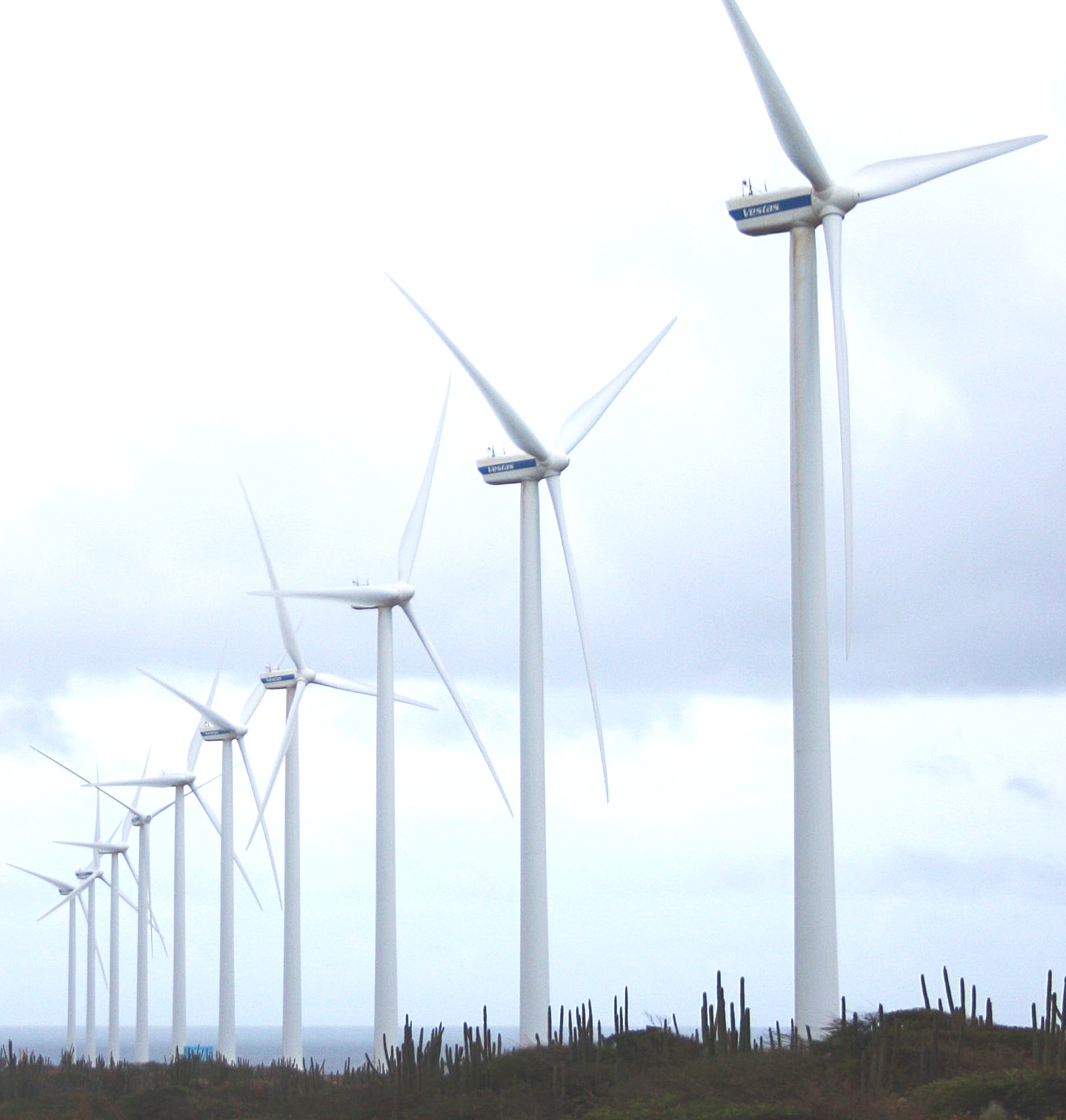 Wind farms for climate protection